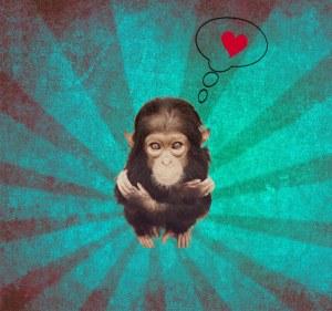 sfondo scimmietta